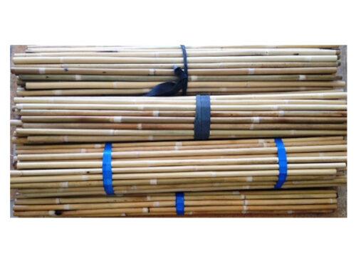 splicing-canes